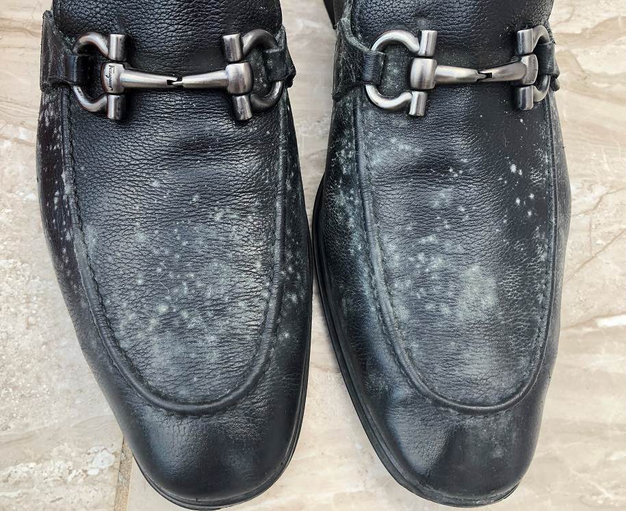 Prevent Mold On Leather Shoes