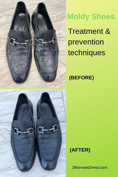 Moldy Shoes Pinterest
